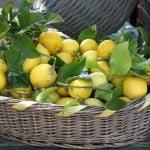Salsa Al Limone della Nonna