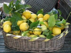 Limoni per il fegato