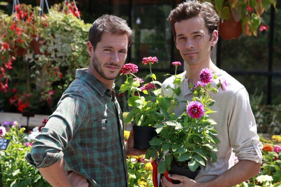 Giardinieri in affitto riassunto video prima puntata - Giardinieri in affitto consigli ...