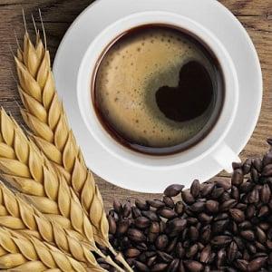 sostituti del caffè: orzo, malto e altri ancora