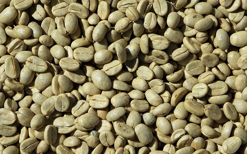 Il caffè verde per la perdita di peso