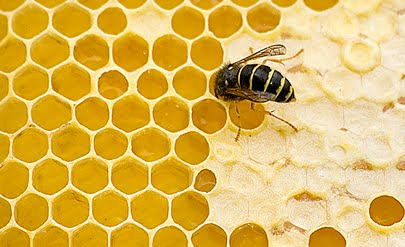 rimedi nonna cera d'api