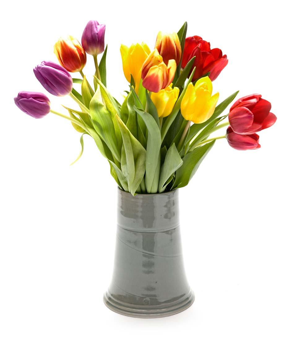 Rimedi per conservare pi a lungo i fiori nei vasi rimedi della nonna - Rimedi per durare di piu a letto ...