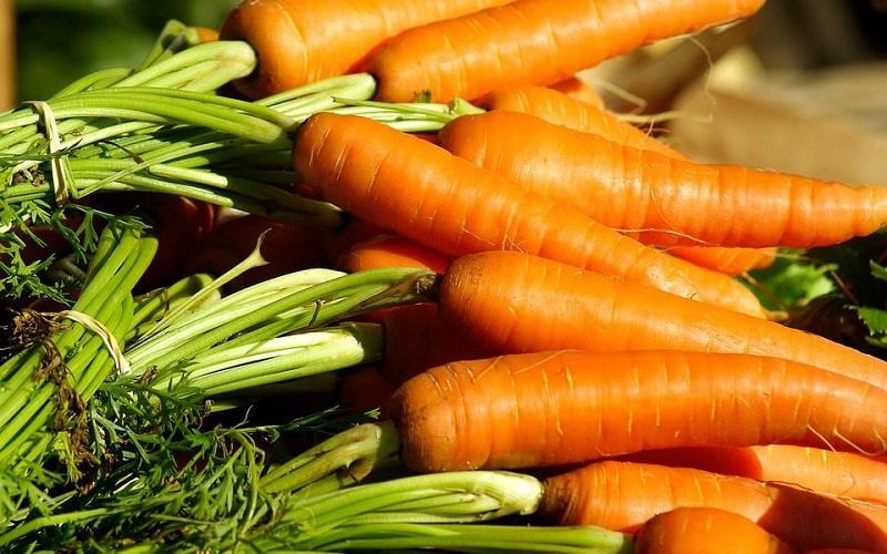 Le ricette della Nonna per 5 maschere per capelli a base di olio di carota