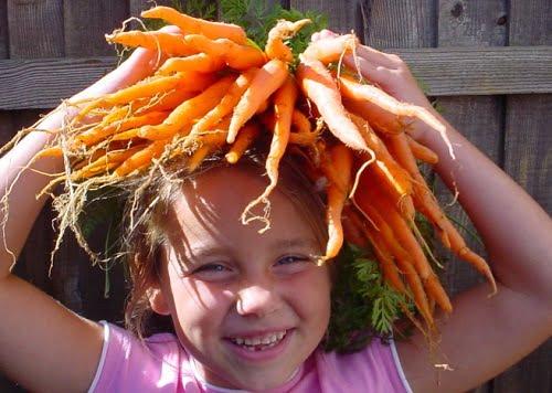 maschere all'olio di carota per capelli bellissimi