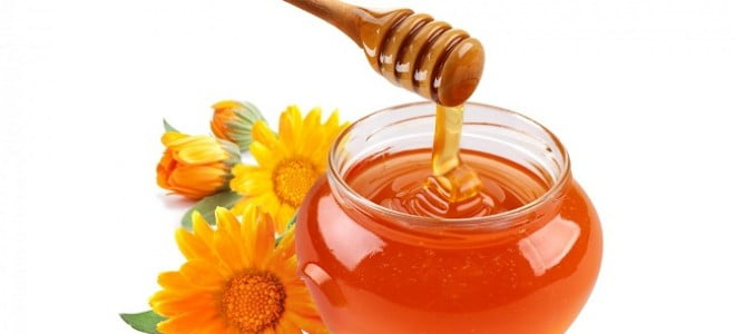 miele-piante-rimedinonna