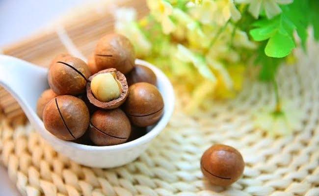 Noci di Macadamia: benefici e utilizzi