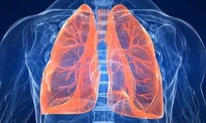 Questo articolo vi farà passare la voglia di fumare!