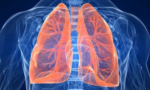 Rimedi naturali per pulire i polmoni