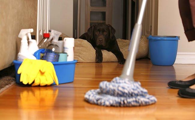 Come disinfettare casa dopo una malattia