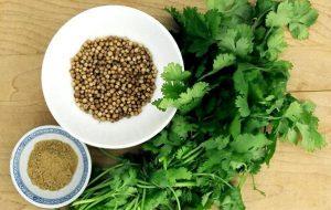 semi di coriandolo a cosa servono e i loro benefici