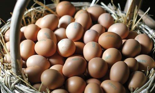 le uova: una fonte naturale di vitamina b12