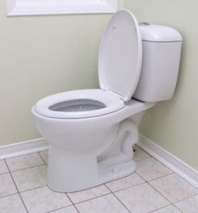 Rimedi naturali per la pulizia del water rimedi della nonna - Rimedi naturali per andare in bagno ...